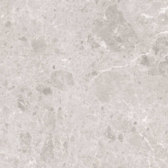 Artic Blanco Wall and Floor Tile