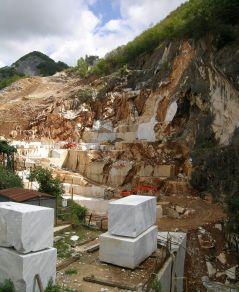 Carrara white Honed Marble Wall and Floor Tile
